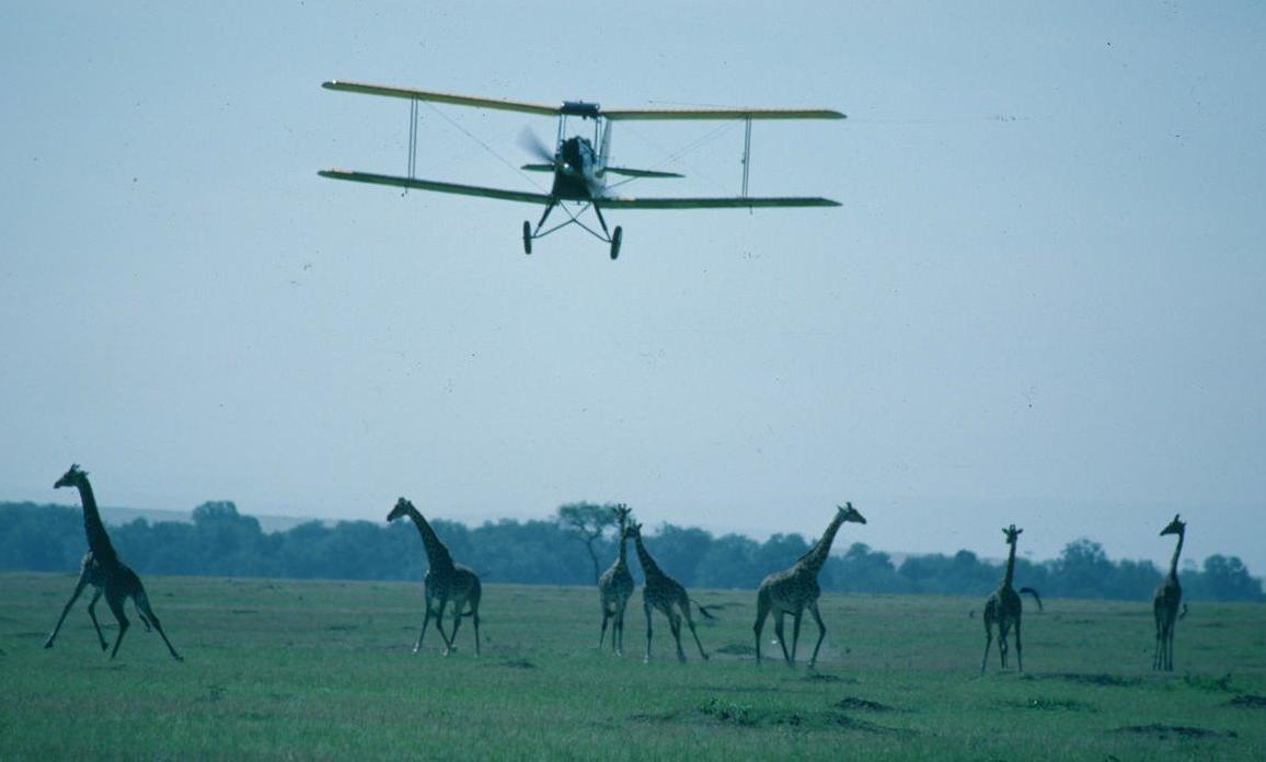 Gipsy-Moth-Plane