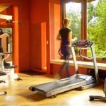 ulusaba-rock-lodge-gym-480