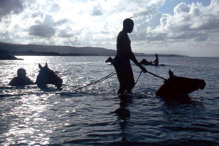 Actividades de aventura en Jamaica
