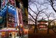 Akihabara y Ueno