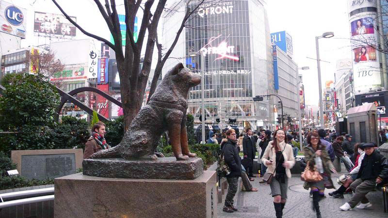 estatua de Hachiko en Shibuya