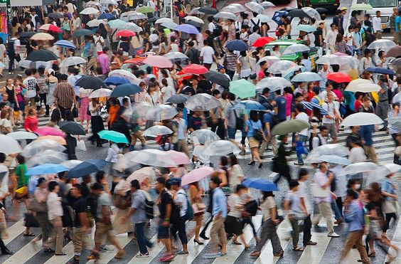 paso de cenra en Shibuya