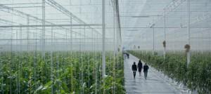 Black Mirror nos dibuja un futuro de lo más sombrío, frío y dominado por la tecnología.