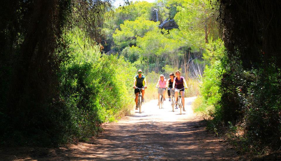 En bicicleta, el paso por la Albufera se hace muy agradable y más dinámico que a pie.