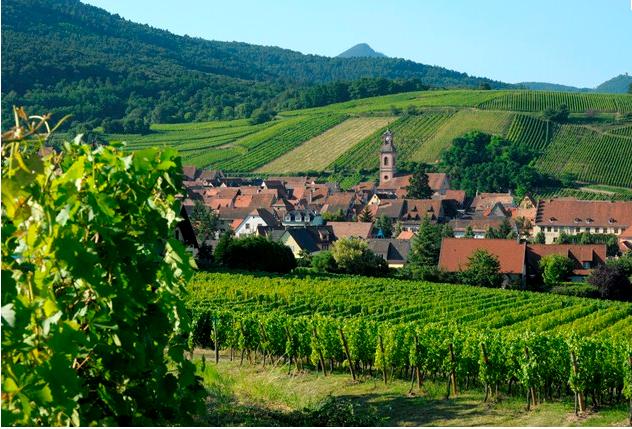 Riquewihr pertenece a la Ruta de los Vinos y es una parada imprescindible ©tourisme-alsace