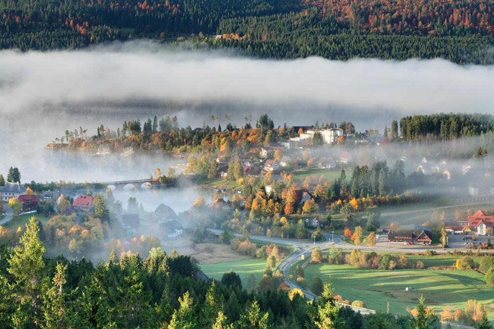 Las laderas en otoño de Sasbachwalden, paisaje relajante e hipnótico