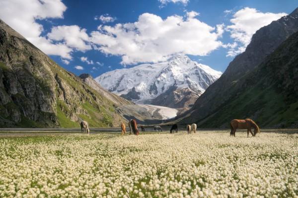 Kuirguistán