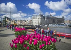 El Festival de los tulipanes es una bonita excusa para visitar Ámsterdam en primavera