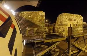 Transporte de palets con flores en un avión de LATAM Cargo.