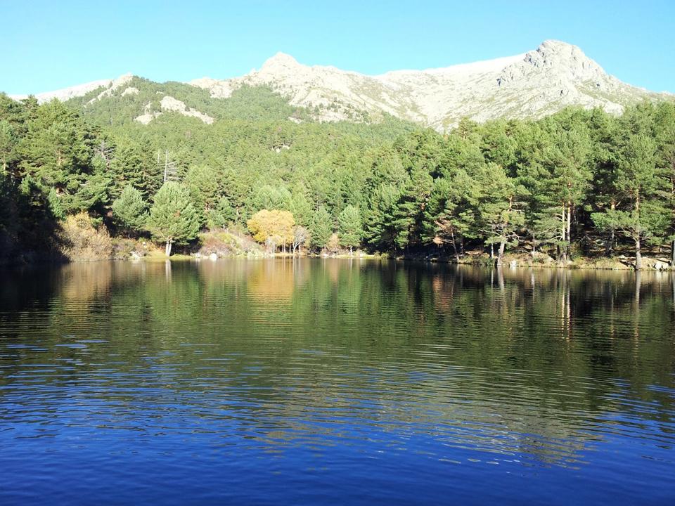 El embalse en el Pinar de La Barranca, Madrid, es una de las zonas donde se realizará la replantación