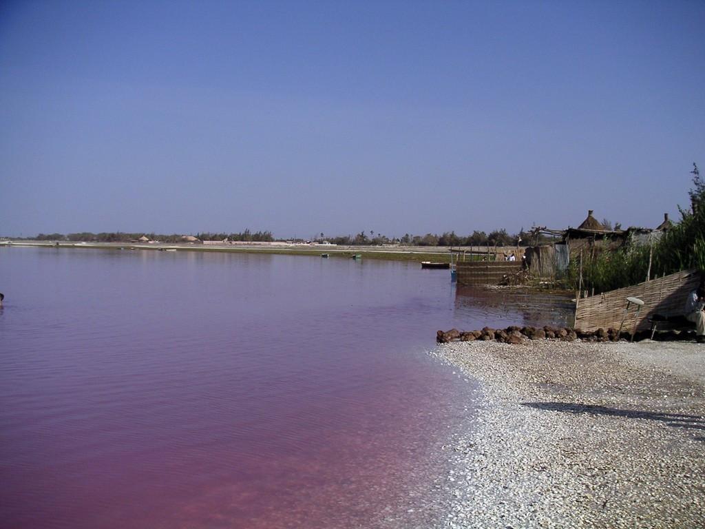 El curioso lago color rosa de Senegal. Foto: Arnault , vía Wikimedia Commons