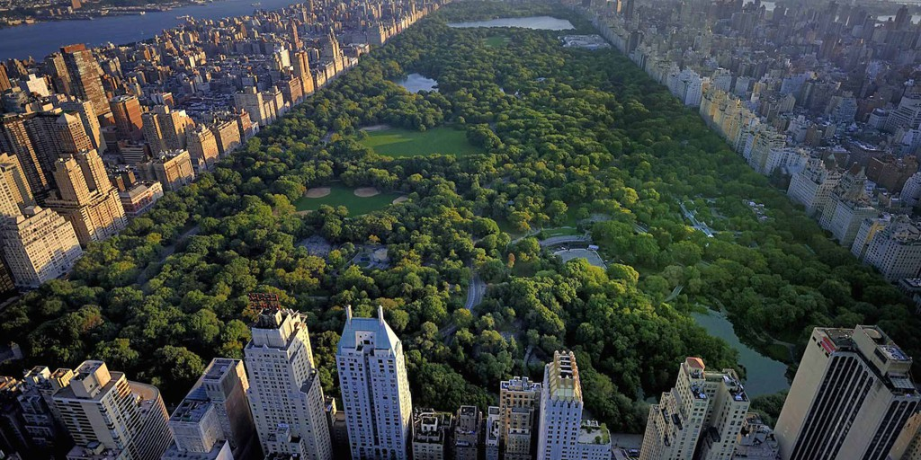 Central Park tiene más de 320 hectáreas de Jardines, praderas y bosques.