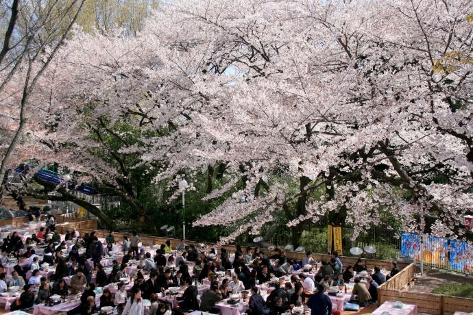 Jornadas gastronómicas en el Toshimaen Park.