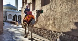 Un emiratí, sobre un camello en las calles de la vieja Dubái.