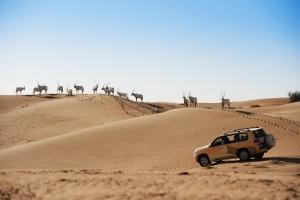 El desierto es una opción imprescindible para el viajero.