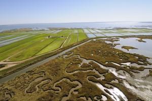 Herdade da Comporta tiene una superficie de 12.500 hectáreas, entre el estuario del río Sado y el mar. Foto: Turismo de Portugal.