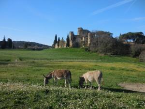 Castillo de Lourmarin. Foto: OT LMV