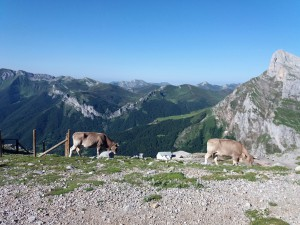 Valle de Liébana en los Picos de Europa. Foto: Aircrew Lifestyle.