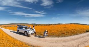 El desierto de Kalahari: el primer explorador extranjero que logró atravesarlo en toda su extensión fue David Livingston en 1849.