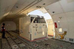 Emirates SkyCargo caballos