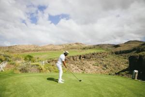 La práctica del golf mejora notablemente la tonicidad de los músculos del tronco.