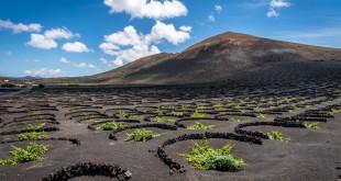 La Geria, un paisaje de viñedos único en el mundo, ayudó a declarar Lanzarote como Reserva de la Biosfera. Foto: © Turismo Lanzarote