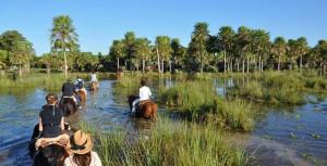 Rutas a caballo por los estuarios de Iberá.
