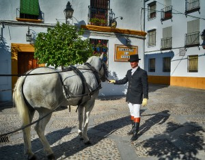 Transporte para turistas Córdoba en Otoño