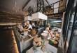 Ofrecen una cocina sabrosa y divertida, elaborada delante del comensal con un producto de proximidad.