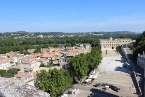 El Ródano separaba el condado Venaissin controlado por los Papas y Francia. Foto: Folliver.