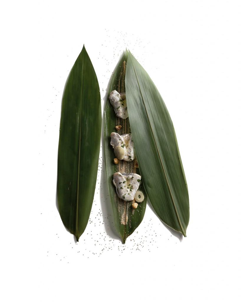 Bambú y kokotxas.