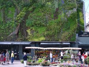 Detalle del muro vegetal del mercado central Les Halles. Foto: Philippe Bar