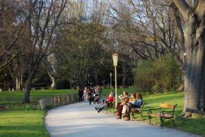 El nombre de este parque de Viena, Türkenschanzpark, proviene de los atrincheramientos históricos turcos que aquí hubo.
