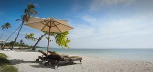 dining-beach-or-poolside-dining-masthead