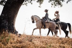 En la finca se crían y desarrollan caballos lusitanos. Foto: Lena Saugen