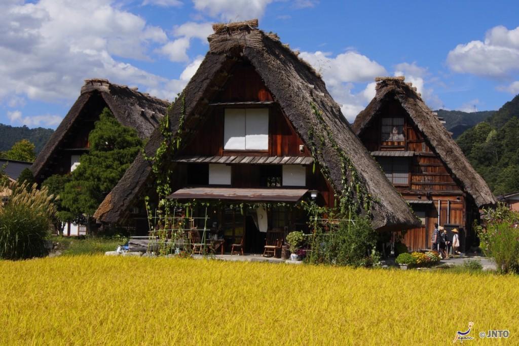 """Sus casas tradicionales son del estilo gassho-zukuri, que significa literalmente """"como manos en oración"""". Foto: Copyright JNTO."""