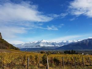 Zona de viñedos. Foto: Lionel Gouverneur
