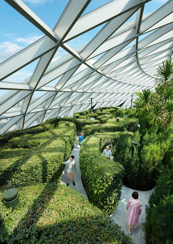 El laberinto vegetal.