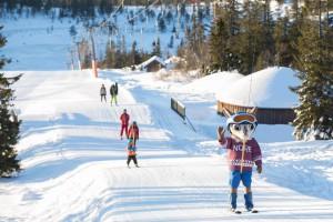Oslo tiene una serie de lugares geniales para esquiar, como Norefjell.