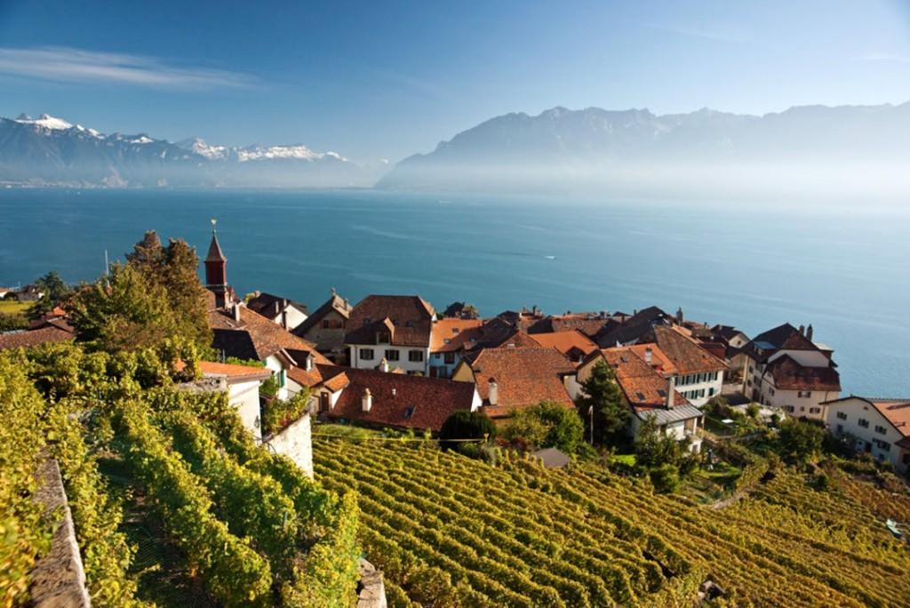 Un pequeño país con más de diez grandes regiones vinícolas.