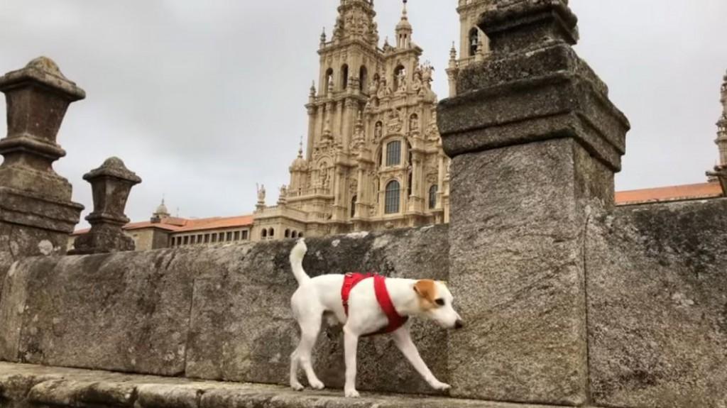 La Catedral de Santiago de Compostela. Foto:  Pipper on tour