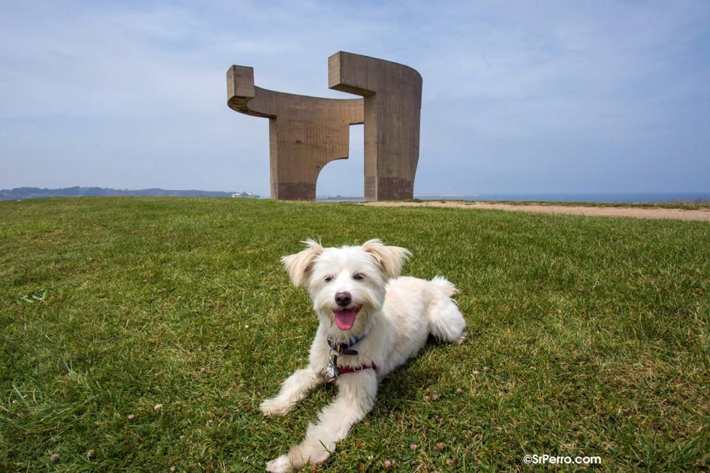 En Gijón, un buen lugar para hacer correr a nuestro can es el Cerro de Santa Catalina junto a la escultura de hormigón  de Eduardo Chillida. Foto: SrPerro