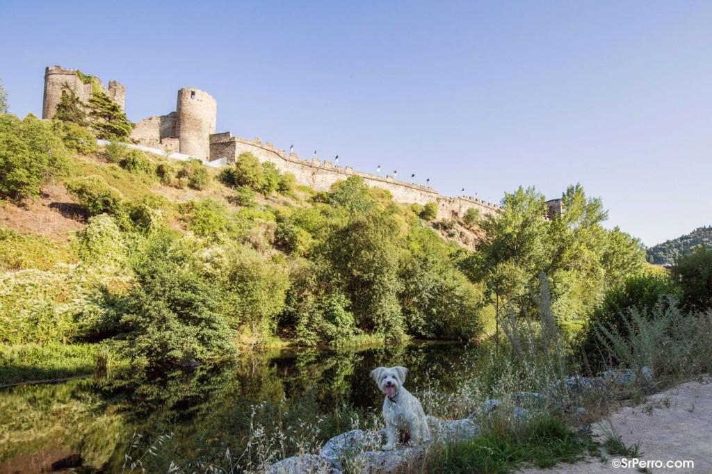 Castillo de los Templarios de Ponferrada. Foto: SrPerro