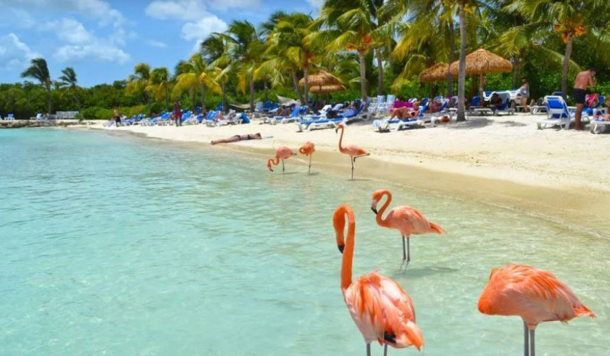 Eagel beach en Aruba.